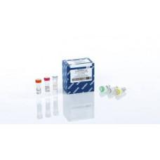 QUANTINOVA PROBE RT-PCR KIT (500)     QIAGEN