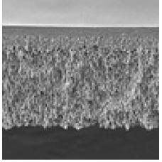 MEMBRANA ULTRACEL PLTK 100KNMWL DIAM 44,5mmCELULOSE REGENERADA (CX) MILLIPORE